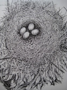 Nest Series #8 H 10 x W8 Pen & Ink