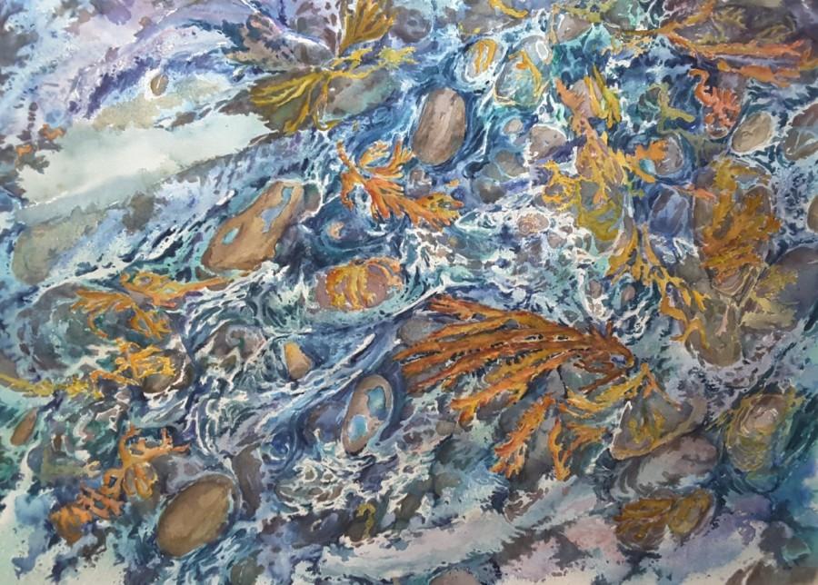 Seaweed Dance